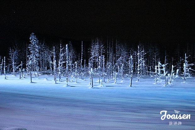 冬季青池點燈